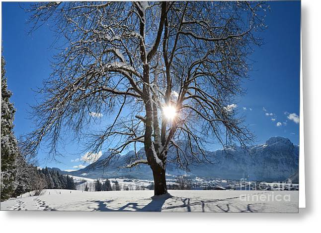 Winter Morning Greeting Card by Sabine Jacobs