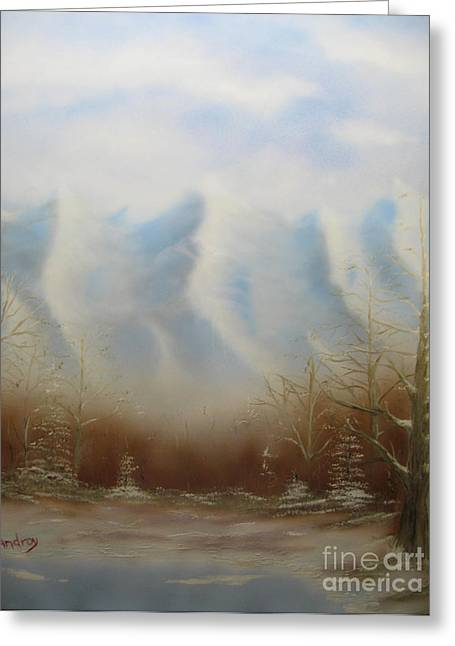 Winter Mountains Greeting Card by Todd Androy