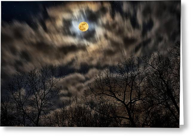 Winter Night Greeting Card