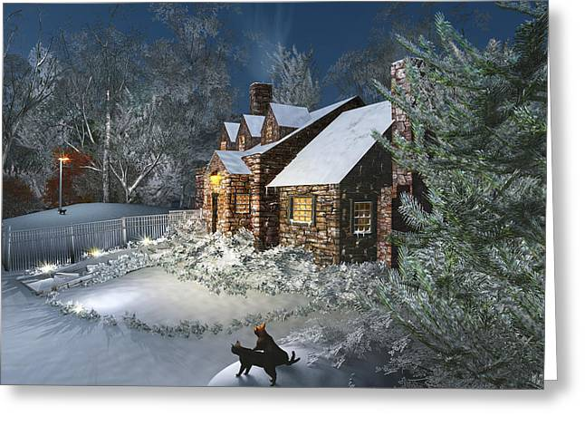 Winter Night Greeting Card by Mary Almond
