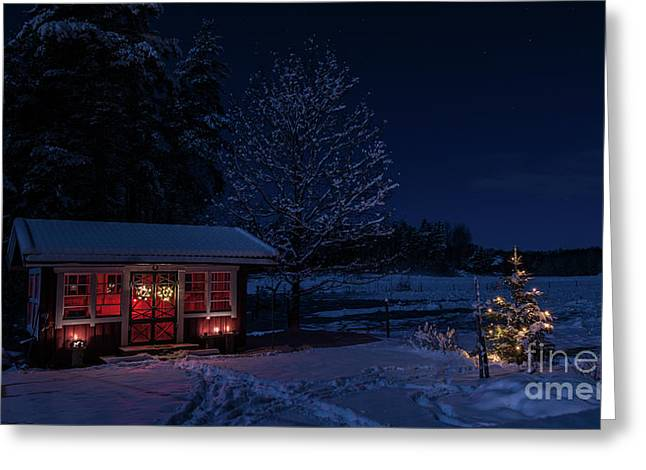 Greeting Card featuring the photograph Winter Night by Torbjorn Swenelius
