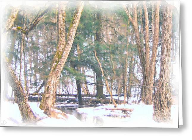 Greeting Card featuring the photograph Winter Oasis by Debi Dmytryshyn