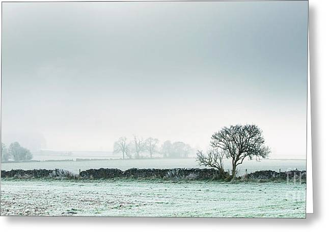 Winter On The Mendips Greeting Card
