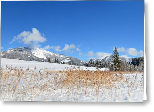 Winter Panorama Greeting Card by Sabine Jacobs