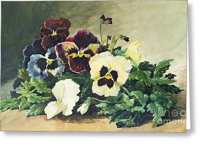 Winter Pansies Greeting Card by Louis Bombled