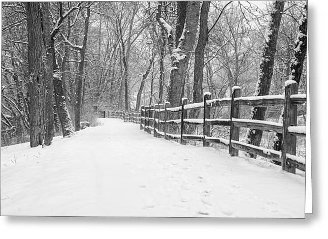 Winter Path Greeting Card by Jeff Klingler