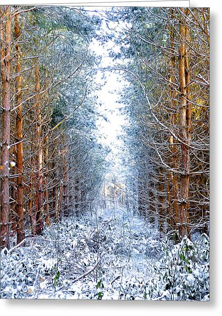 Oil Paint Digital Art Greeting Cards - Winter Path Greeting Card by Svetlana Sewell