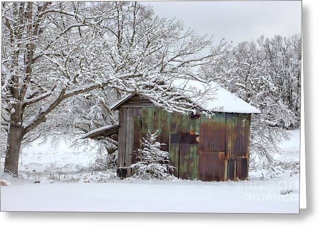 Winter Patina Greeting Card by Benanne Stiens