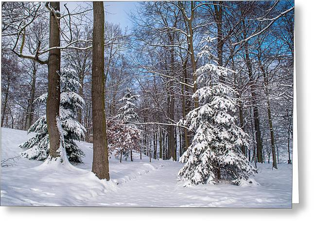 Winter Perfection Greeting Card by Jenny Rainbow