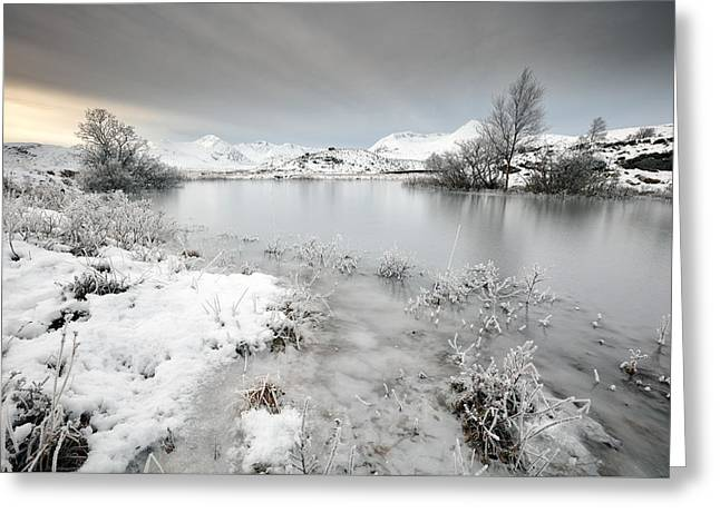 Winter Pond Greeting Card by Grant Glendinning