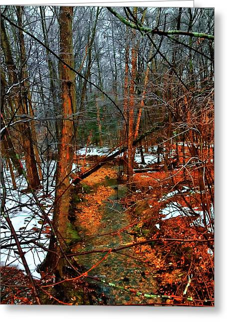 Winter Recedes Greeting Card by Michael Putnam