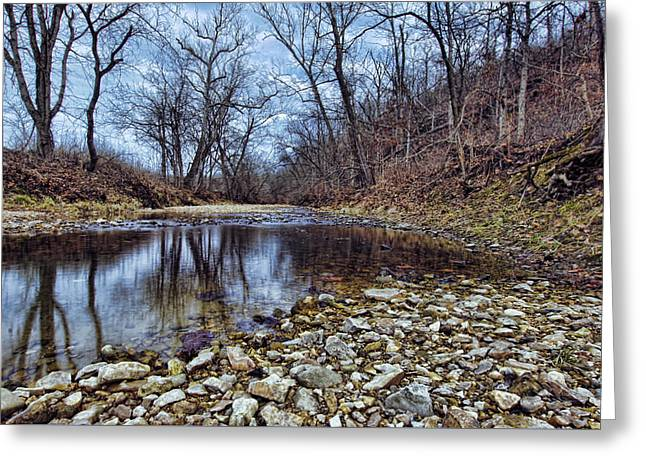 Winter Reflections Greeting Card by Cricket Hackmann