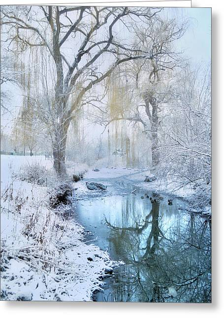 Winter Reflections In Blue Greeting Card by Tara Turner