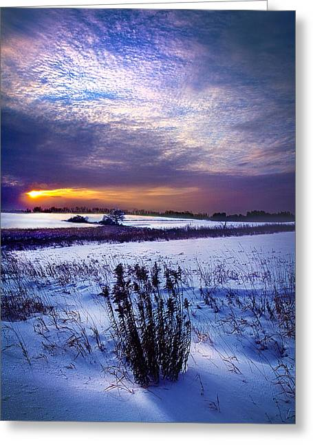 Winter Rising Greeting Card by Phil Koch