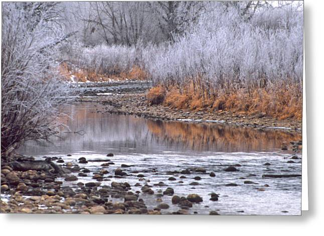 Winter River Greeting Card by Bruce Gilbert