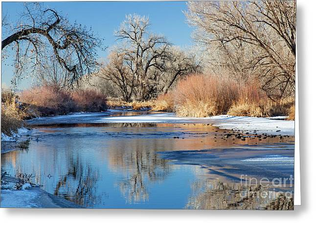 Winter River In Colorado Greeting Card