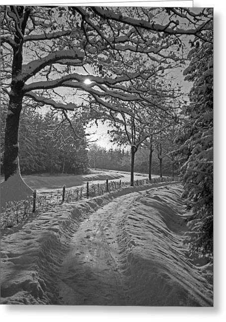Winter Road  Christmas Card Greeting Card by German School