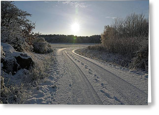 Winter Road Greeting Card