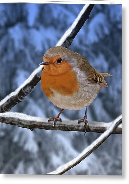 Winter Robin Greeting Card