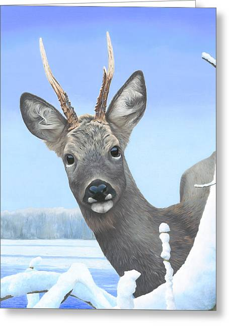Winter Roebuck Greeting Card by Clive Meredith