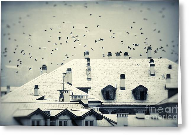 Winter Roofs Greeting Card by Silvia Ganora