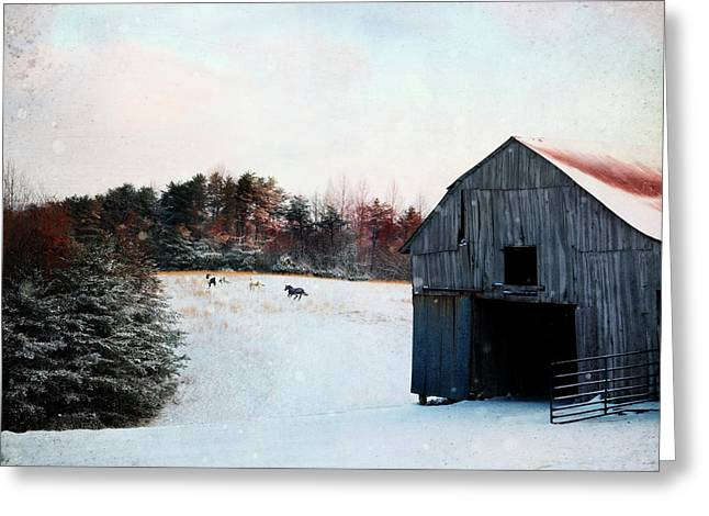 Loose Greeting Cards - Winter Run Greeting Card by Stephanie Frey