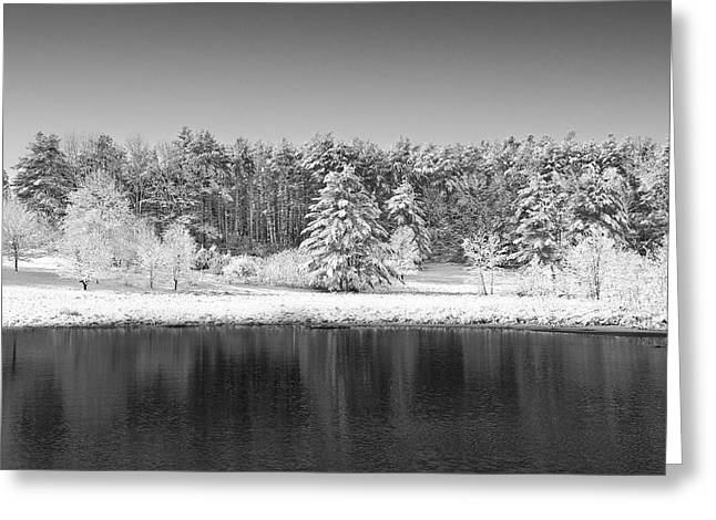 Winter Scene 2 Greeting Card by Edward Myers
