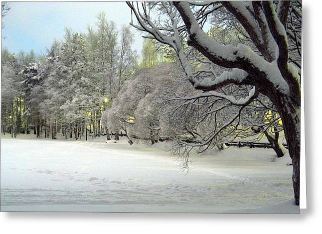 Greeting Card featuring the photograph Winter Scene 3 by Sami Tiainen