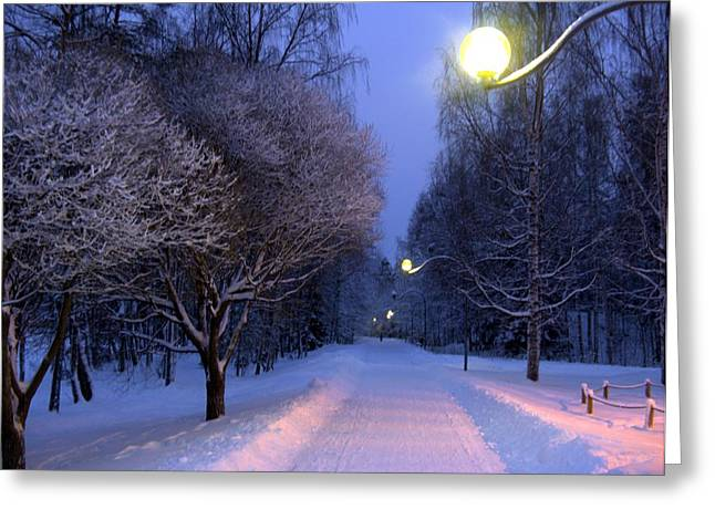 Greeting Card featuring the photograph Winter Scene 4 by Sami Tiainen