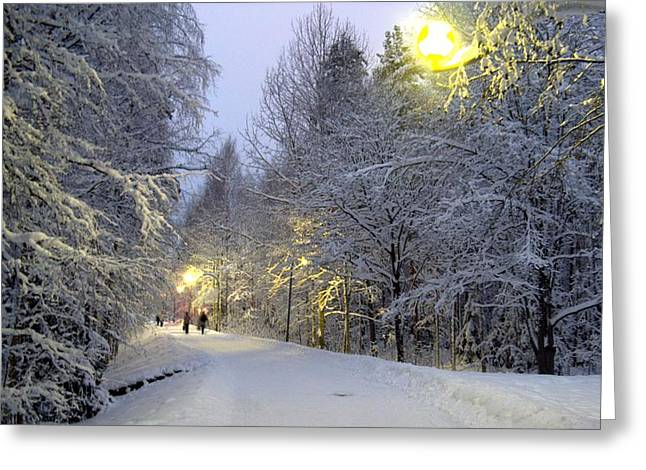 Winter Scene 5 Greeting Card by Sami Tiainen
