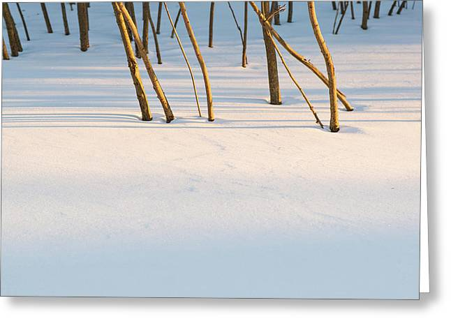 Winter Scene - Abstract Greeting Card