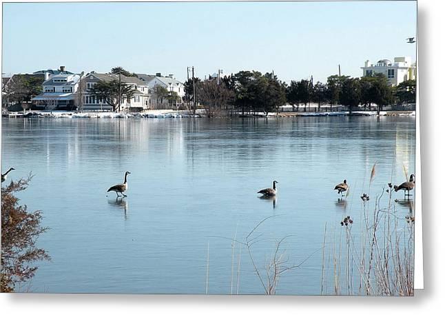Idyllic Winter Landscape On Silver Lake Greeting Card by Kim Bemis