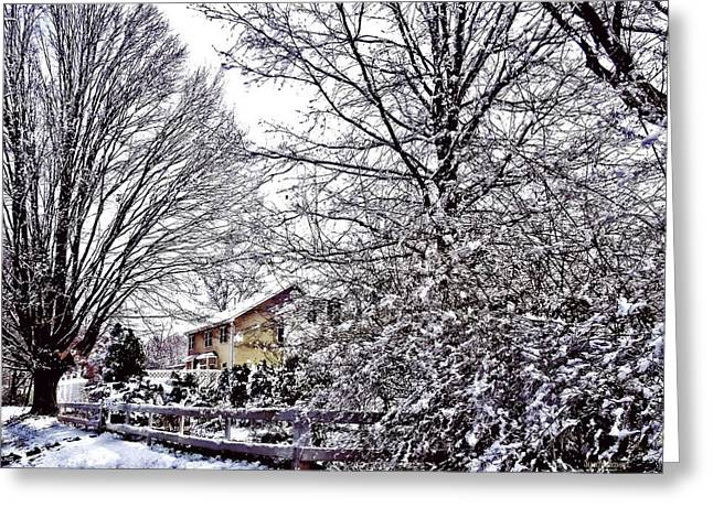 Winter Scene Greeting Card by Susan Savad