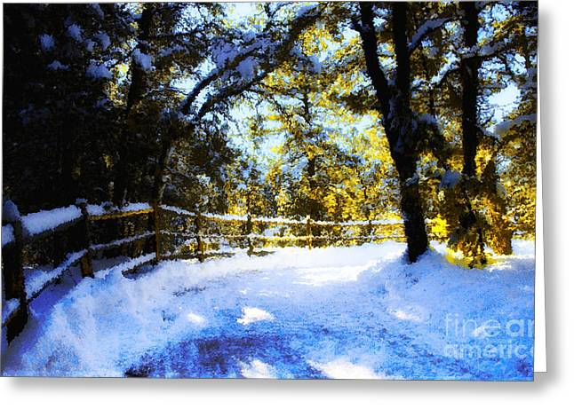Winter Scene Greeting Card by Terry Runion