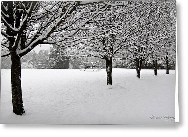 Winter Serenity Greeting Card