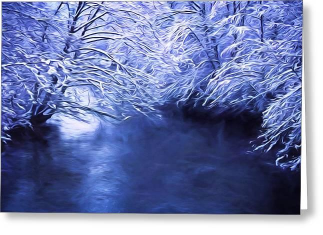 Winter Silence Greeting Card by Richard Farrington