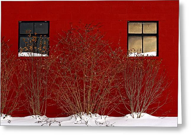 Greeting Card featuring the photograph Winter Sky Reflection by Don Nieman