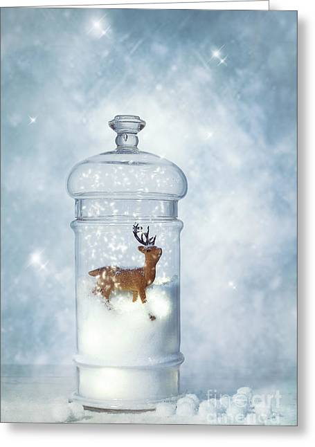 Winter Snow Globe Greeting Card by Amanda Elwell