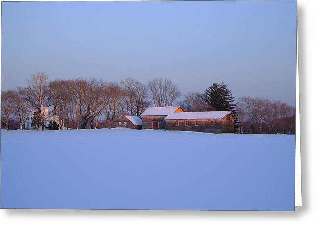 Winter Solace Greeting Card by Leonardo Ruggieri