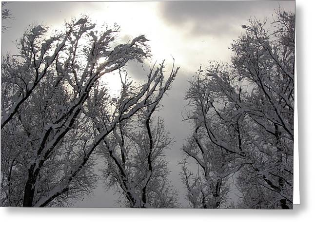 Winter Solstice Utah Greeting Card