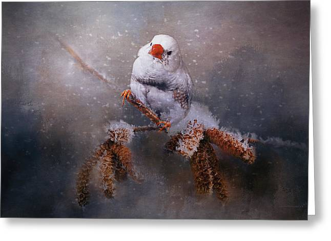 Winter Song Greeting Card by Maria Angelica Maira