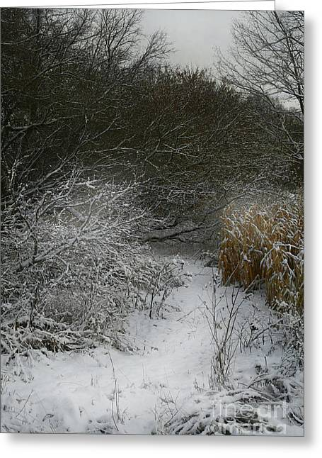Greeting Card featuring the photograph Winter Stew by Jan Piller