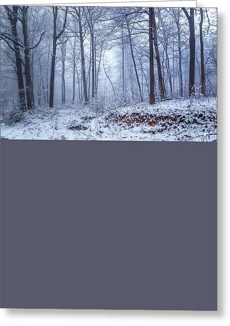 Winter Still Greeting Card by Ron Jones