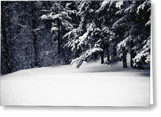 Winter Storm Greeting Card by Maggie Terlecki
