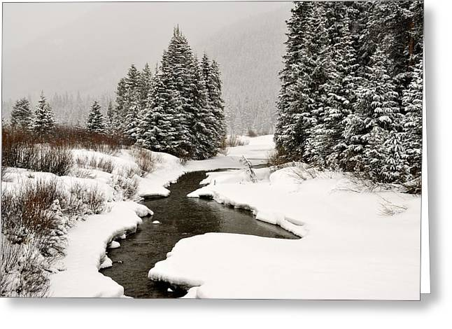 Winter Stream Greeting Card by Frank Remar