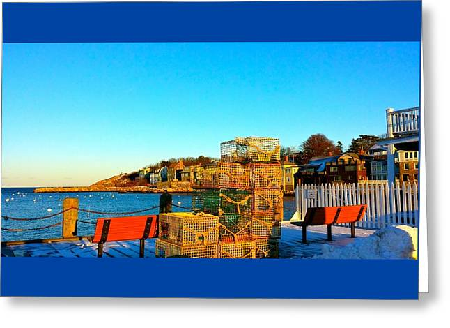 Winter Sun At Rockport Harbor Greeting Card by Harriet Harding