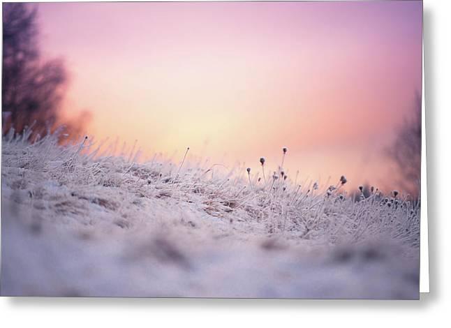 Winter Sun Salutation Greeting Card by Jenny Rainbow