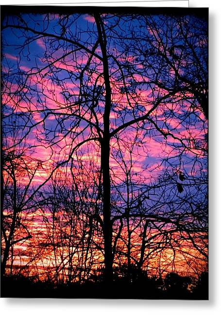 Winter Sunrise Greeting Card by Betty Buller Whitehead