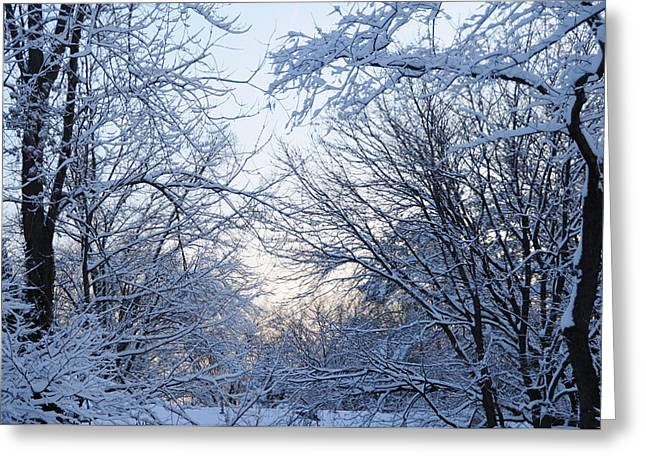 Winter Sunrise Greeting Card by Dimitri Meimaris