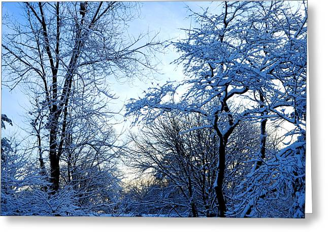 Winter Sunrise II Greeting Card